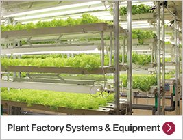 Plant Factory Systems & Equipment